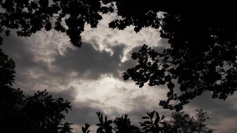 Gloomy Spooky Dark Sky With Trees 2 Footage