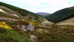 Wicklow Way Co. Wicklow Footage
