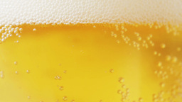 Beer Pour Close Up stock footage