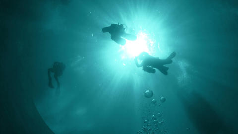 Group of Divers make to dive Footage