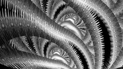 Carnival feathers. With alpha channels Stock Video Footage