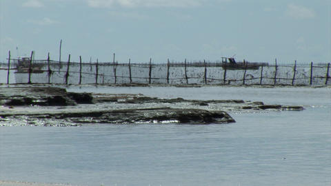 Fishing Lagoon Stock Video Footage