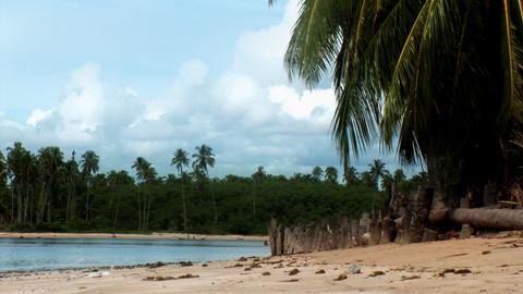 Tropical Lagoon Footage