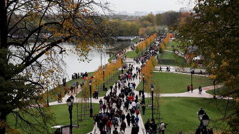 People walk in park top view Stock Video Footage