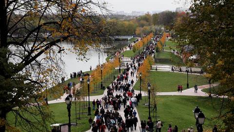 People Walk In Park Top View stock footage