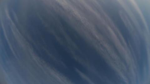 1177 Sky Fish HD J96 Stock Video Footage
