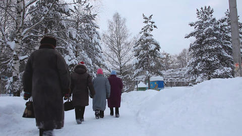 old woman go out in winter park Stock Video Footage