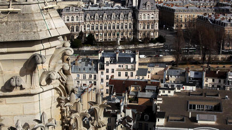 View on city from Notre Dame de Paris Stock Video Footage