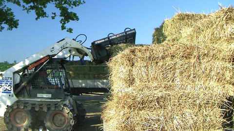 Farmer Loading Hay Stock Video Footage