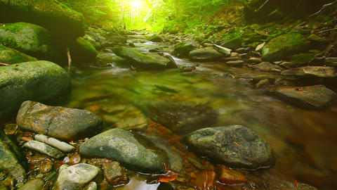 forest stream - slow motion. three clips Footage
