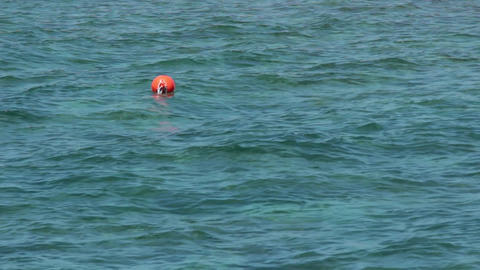 Sea surface, calm blue waves with a red buoy Footage