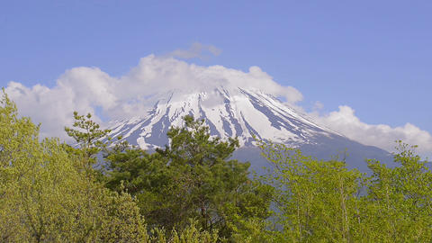 Spring Landscape of Mt.Fuji,Yamanashi,Japan Footage