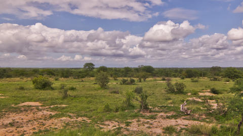 African Savannah Time Lapse Pan Footage