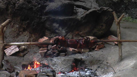 Suckling Piglet Roasting On A Spit stock footage