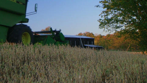 Combine Harvesting Soybeans Stock Video Footage
