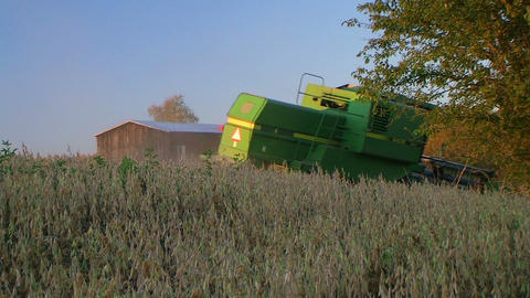 Combine Harvesting Soybeans Footage