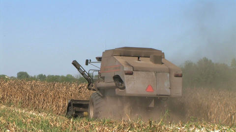 Combine Harvesting Corn 07 Live Action