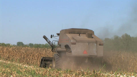 Combine Harvesting Corn 07 Stock Video Footage
