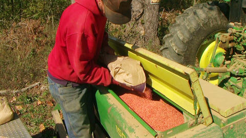 Farmer Filling Seeder With Wheat Stock Video Footage