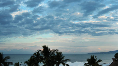 Cloudy blue sky with palm trees Stock Video Footage