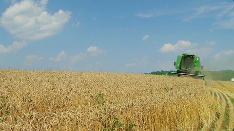 Combine Harvesting Wheat 03 Stock Video Footage