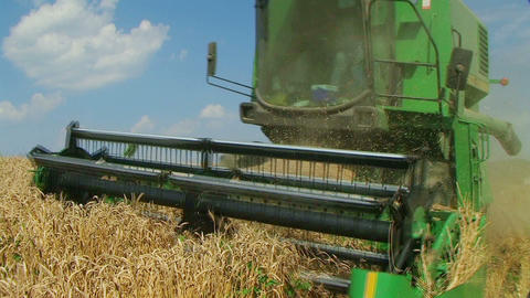 Combine Harvesting Wheat 03 Stock Video Footage