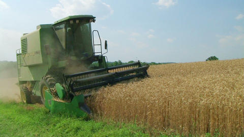 Combine Harvesting Wheat 05 Stock Video Footage