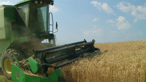 Combine Harvesting Wheat 05 Footage