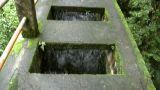 walking water bridge aqueduct rain jungle B Stock Video Footage