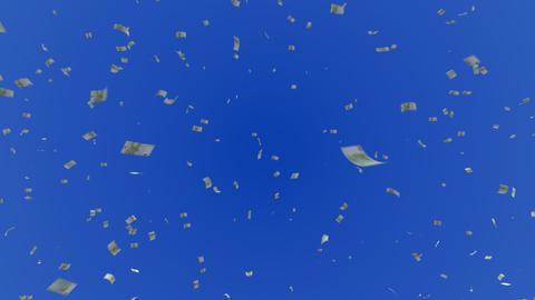 Money Euro S c Animation