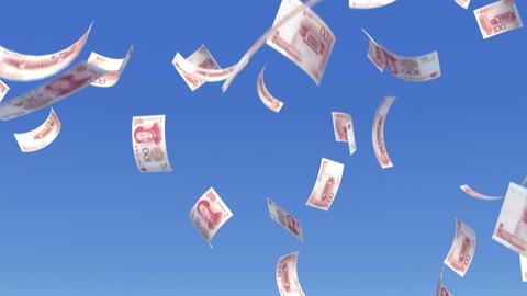 Money RMB L b Animation