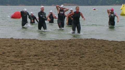 Swimmers Finish Race Stock Video Footage