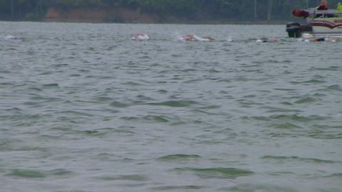 Swimmers Racing In Triathlon 03 Stock Video Footage