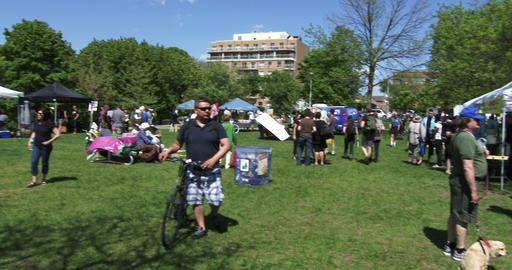 People attend anti GMO protest Footage