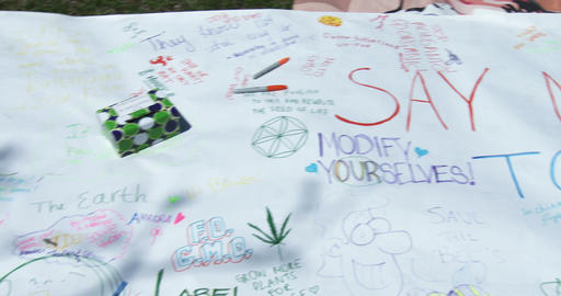 Slogans Against GMO stock footage