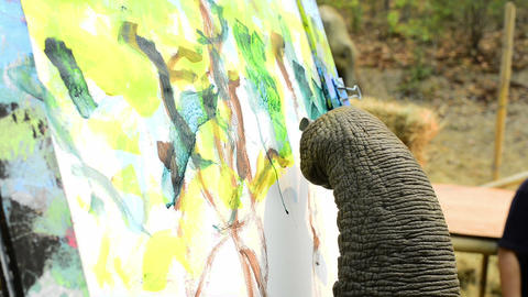 Elephant Painting stock footage