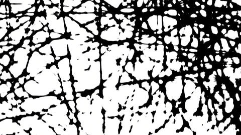 abstract motion background black and white graphic Footage