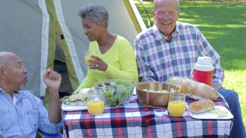 Two Senior Couples Enjoying Camping Holiday In Cou Footage