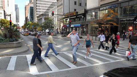 Michigan Ave Crosswalk Footage