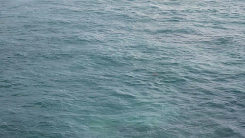Ocean Background stock footage