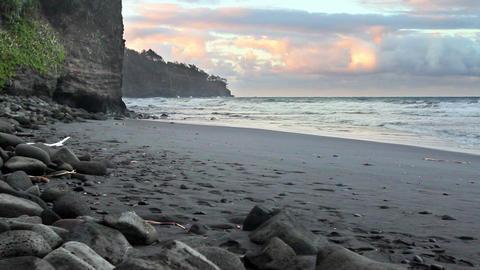 Black Sand Beach Live Action