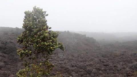 Desolate Lava Rock Landscape 2 Live Action
