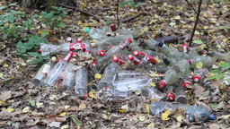 Dump in the forest - glass and plastic bottles. 4 Archivo