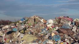 Garbage dump, waste disposal, landfill Live Action
