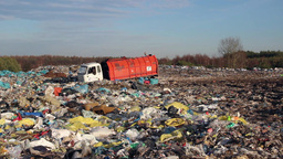 Garbage truck at landfill Live Action