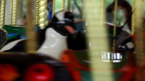 Carousel Footage