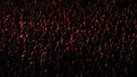 Cheering Crowd at Concert 1 Footage
