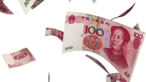Falling Yuan (Loop on White) Animation