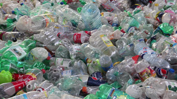 Recycling - plastic bottles at recycling center 5 Live Action