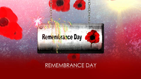 remembrance day Animation